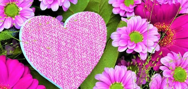 أشعار وقصائد حب وغرام
