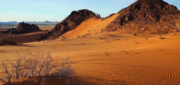 أكبر صحراء في الوطن العربي