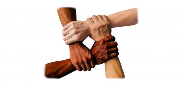 أقوال وحكم عن التعاون