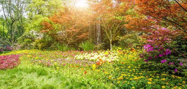 أقوال عن فصل الربيع