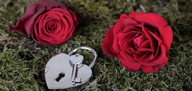 أشعار عن الحب مكتوبة