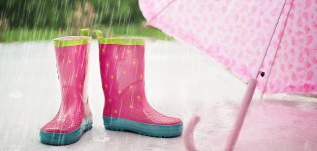 كلمات عن المطر والشتاء