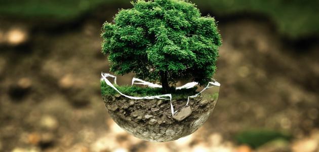 المحافظة عن البيئة