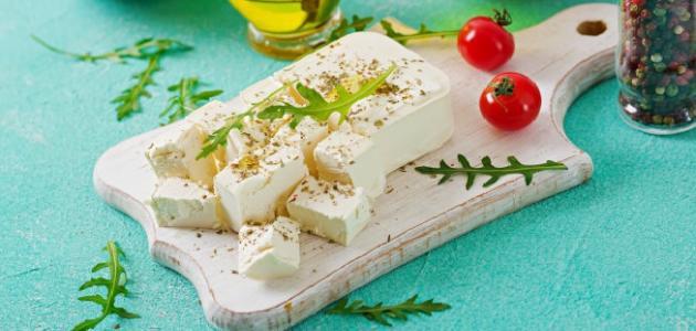 طريقة صنع الجبن من الحليب البودرة