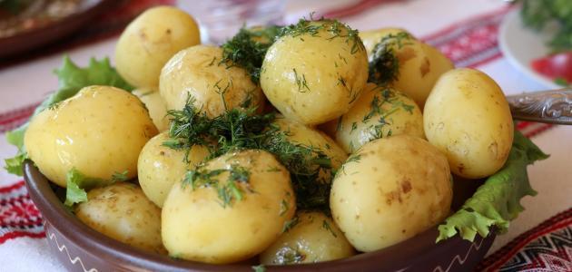طريقة سلق البطاطس وهرسها