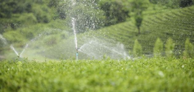 استخدامات الماء