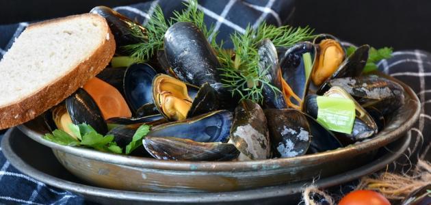 طريقة طبخ بلح البحر المجمد
