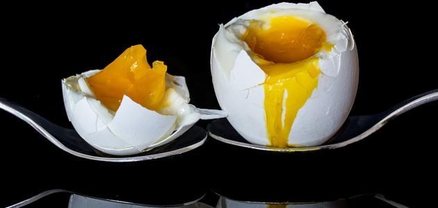 أكل البيض النيئ