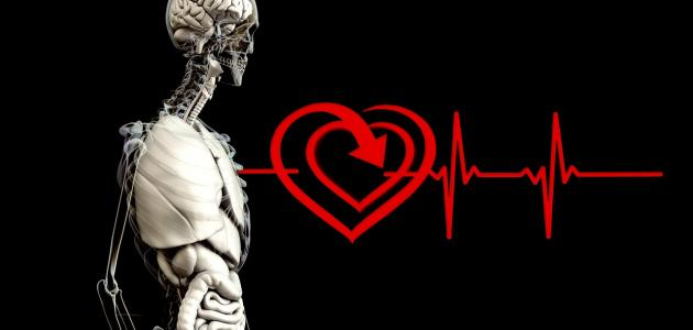 أمراض القلب وأعراضها