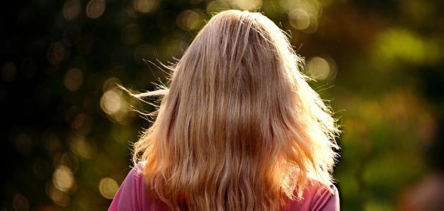 ما هو هاي لايت الشعر
