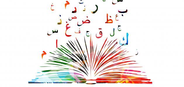أجمل ما قيل في اللغة العربية الفصحى