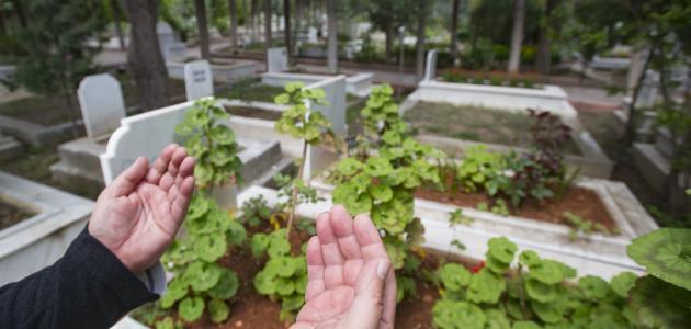 الحكمة من زيارة القبور