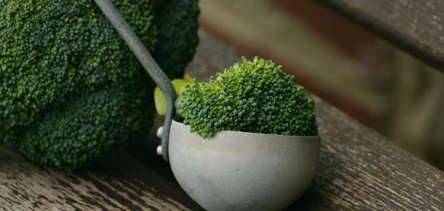أكلات شهية للنباتيين