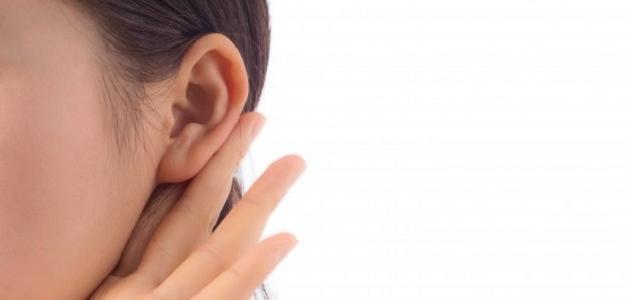 أهمية الأذن في جسم الانسان