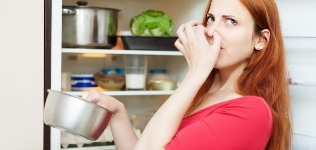 سبب رائحة الثلاجة