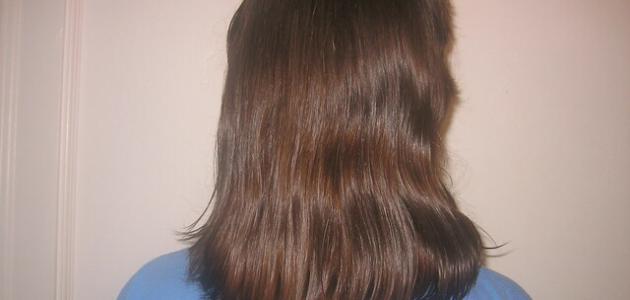 كم المدة التي يطول فيها الشعر