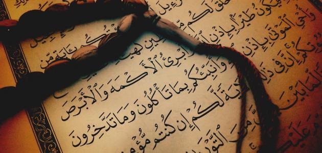 كلمات عن اللغة العربية جميلة