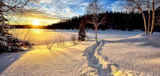 أجمل ما قيل في فصل الشتاء