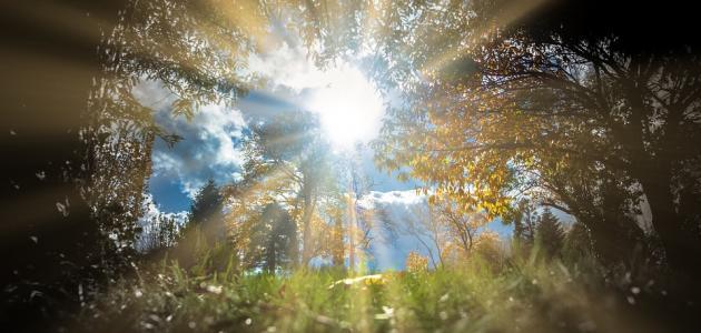 أحاديث قدسية عن رحمة الله