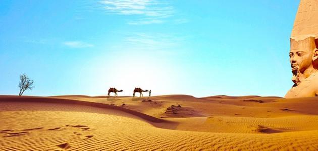 أجمل ما قيل في مصر