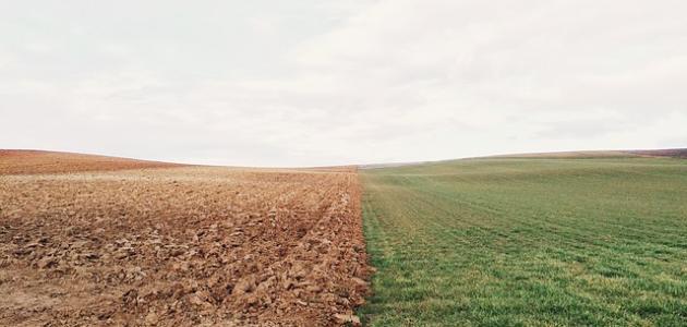 كيف يحافظ الإنسان على التربة