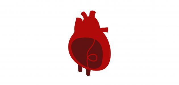 اسم غشاء القلب