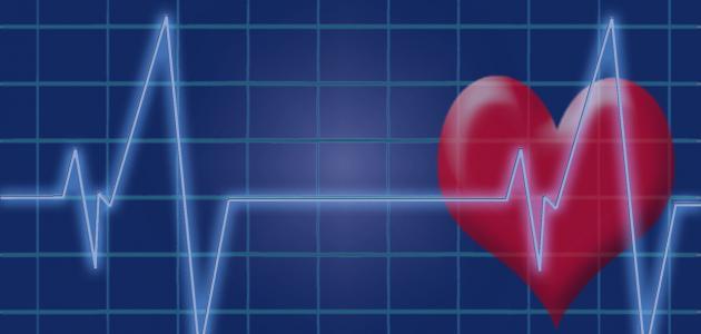 بحث عن تخطيط القلب