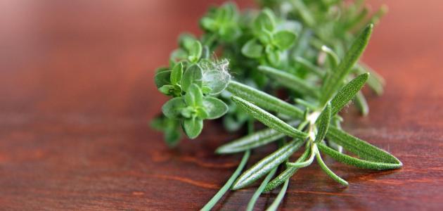 أعشاب تحتوي على هرمون الإستروجين