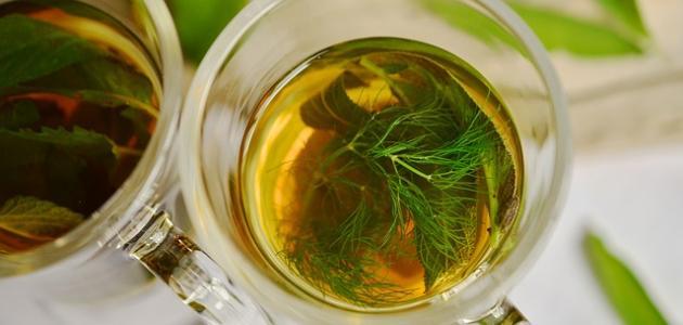 أعشاب تشرب أثناء الدورة الشهرية