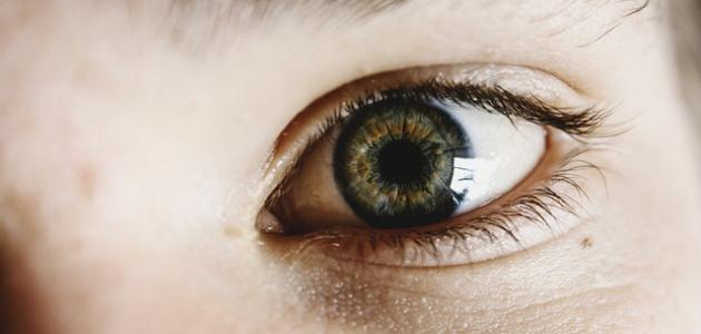 أسباب رمش العين
