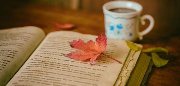 ما قيل عن القراءة