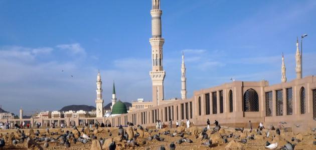أبناء الرسول محمد صلى الله عليه وسلم