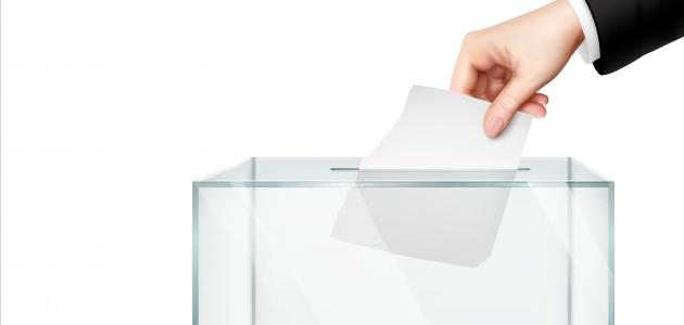 ما هي الديمقراطية المباشرة