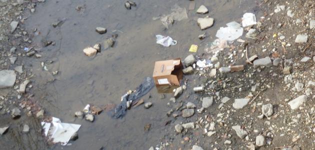 ما المقصود بتلوث الماء
