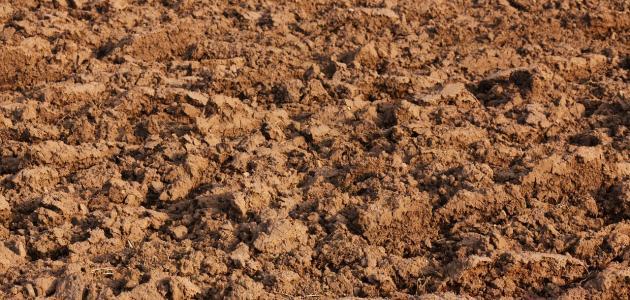 ما أنواع التربة