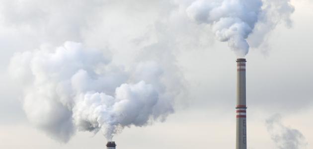 كيفية الحد من التلوث البيئي