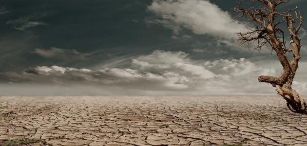 ما معنى الجفاف