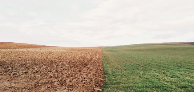 كيفية الحفاظ على التربة