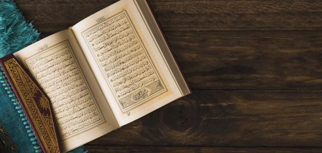 كم نبي ذكر بالقرآن