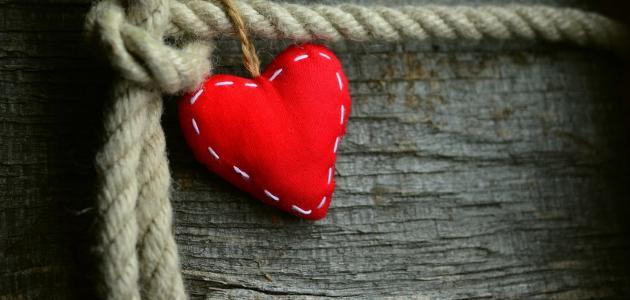 ما قيل عن القلب
