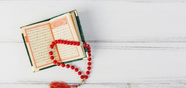 كم مرة ذكرت السيدة مريم في القرآن الكريم