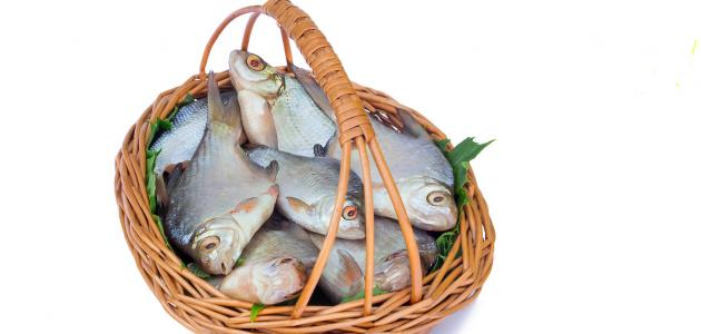 فوائد السمك