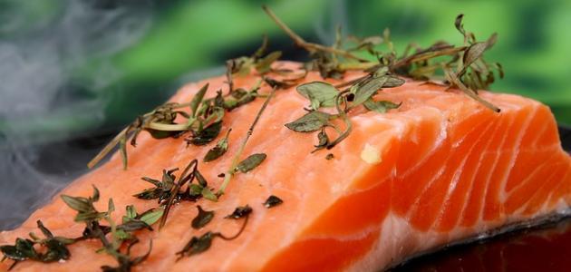 أهم الأغذية التي تحتوي على البروتين