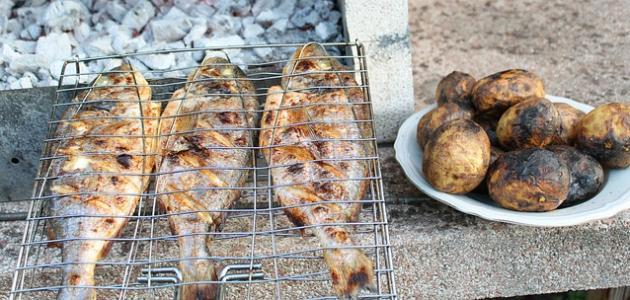 طريقة شوي فيليه السمك على الفحم