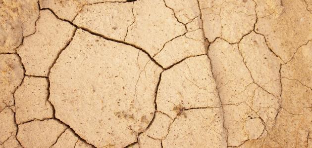 آثار تلوث التربة
