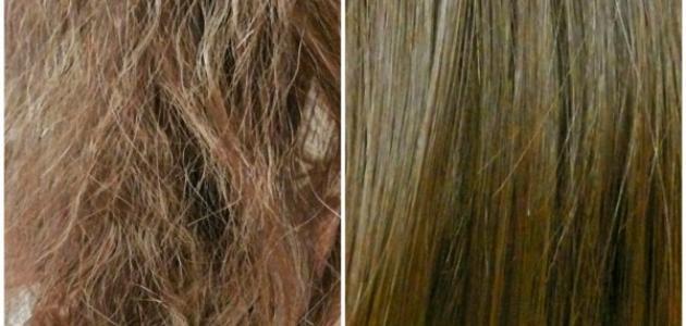 كيف تعالج الشعر التالف