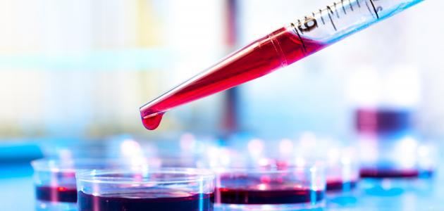 ما هو تحليل الدم mpv