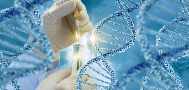 ما هو تحليل الجينات