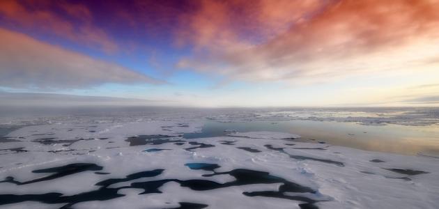 ما أصغر المحيطات في العالم مساحة