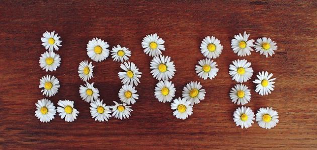 أحسن كلام حب